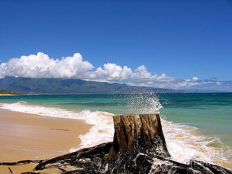 Maui Splash by Jason Clinkscales