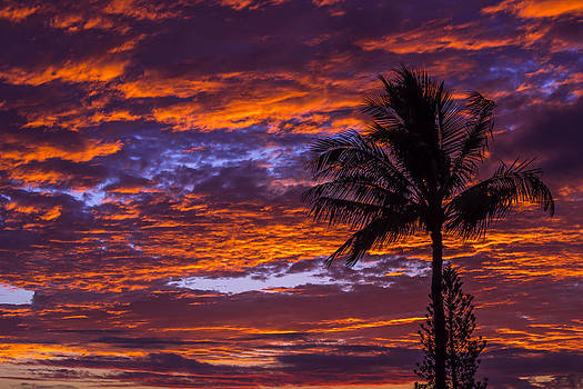 Maui Sunset by Jonica Hall
