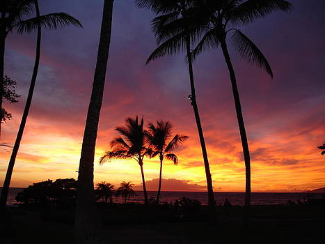 Maui Sunset by Kim Baker