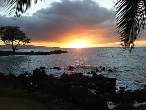 Maui Sunset by Patricia Kimsey Bollinger
