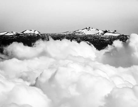 Mauna Kea by Denise Bird