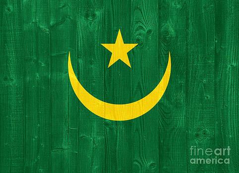 Mauritania flag by Luis Alvarenga