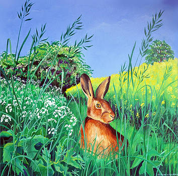 May hare by Jane Tomlinson