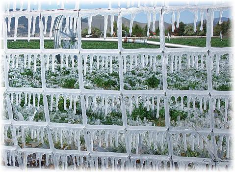 Kae Cheatham - May Irrigation #2