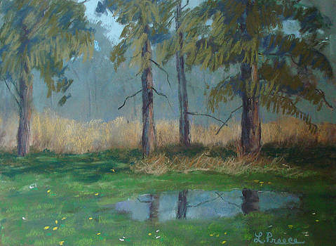 May Puddle by Linda Preece