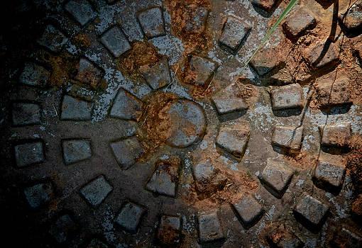 Maya by Odd Jeppesen