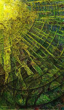 Mayan Awakening by Joe MacGown