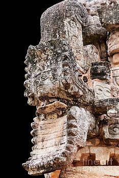Jo Ann Snover - Mayan vision serpent carving