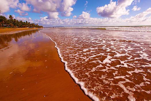 Mayaro Beach  by Dexter Browne