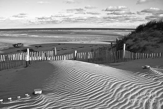 Amazing Jules - Mayflower Beach Black and White
