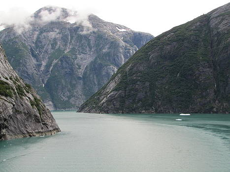 Maze of Mountains and Water in Alaska by Barbara Chachibaya