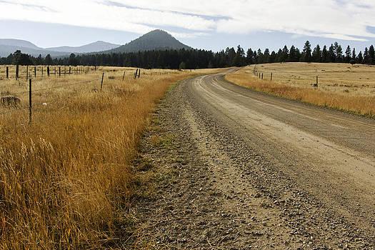McClellan Creek Rd Helena Montana by Dana Moyer