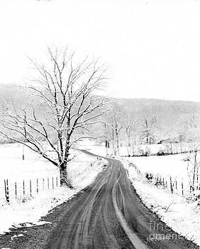McGee Cove Road by   Joe Beasley
