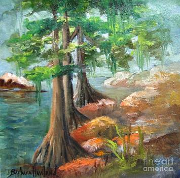 McKinney Falls Plein Air by Barbara Haviland