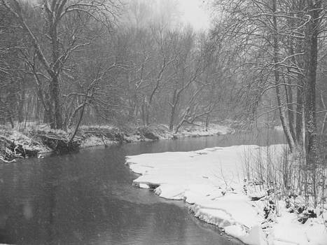 Melissa Lightner - McMahon Creek