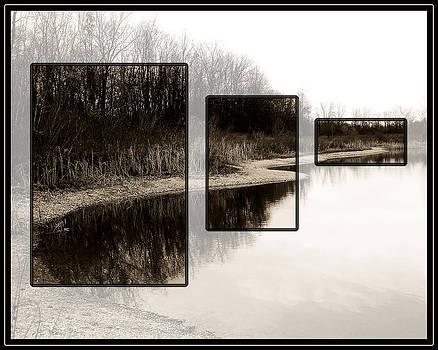 McNamara Landing by Gene Tatroe