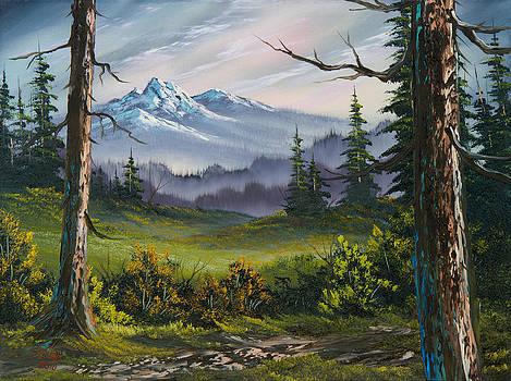 Chris Steele - Meadow View