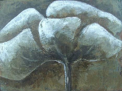 Meadowflower by Liesbeth Verboven