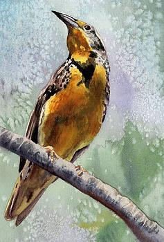 Anne Gifford - Meadowlark
