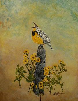 Meadowlark Sings by Connie Rowsell