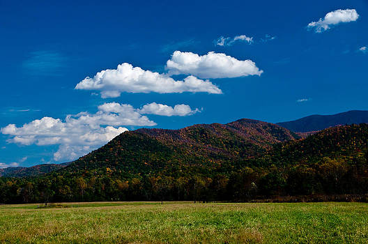 Meadows and Mountains by Ron Plasencia