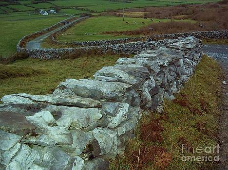 Carolyn Kami Loughlin - Meandering Wall
