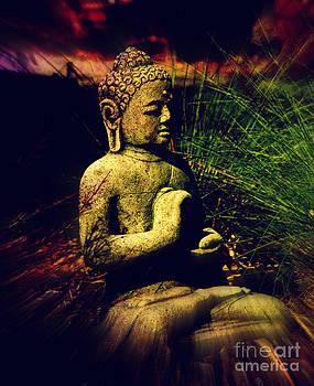 Susanne Van Hulst - Meditating Buddha