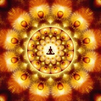 Meditation Galaxy 1 by Derek Gedney