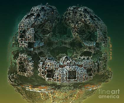 Medusae by Bernard MICHEL