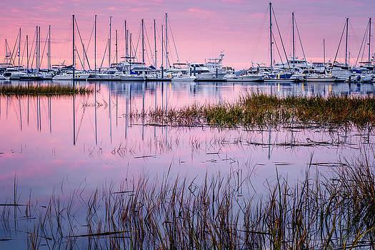 Mega Dock by Steve DuPree