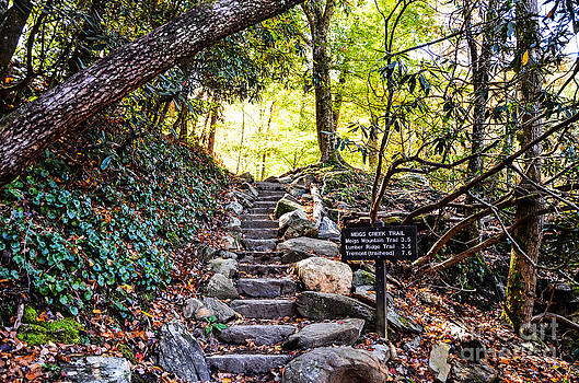 Paul Mashburn - Meigs Creek Trailhead