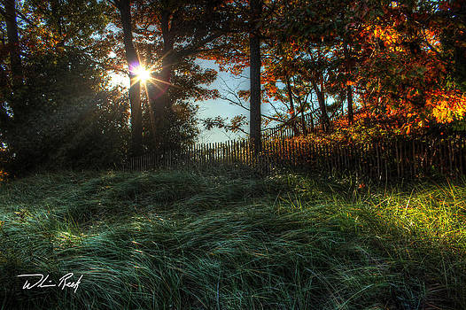 William Reek - Meinert Park Autumn