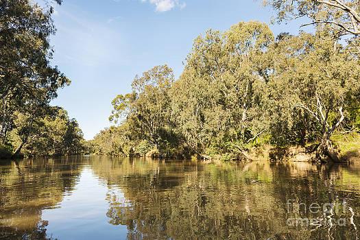 Tim Hester - Melbourne Yarra River