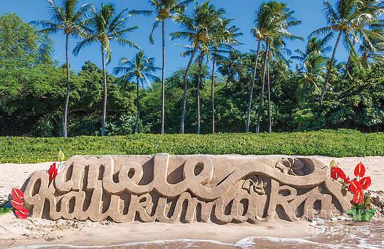 Mele Kalikimaka Palms by Denise Bird