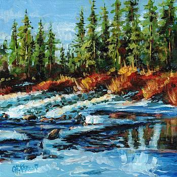 Christine Karron - Melting Ice Fish Creek Calgary
