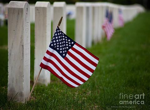 Wayne Moran - Memorial Day - Fort Snelling National Cemetery