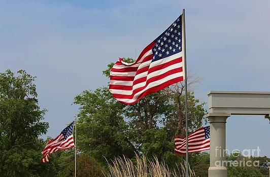 Memorial Day Flag's with Blue Sky by Robert D  Brozek