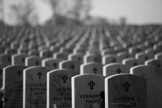 Wayne Moran - Memorial Day We Remember