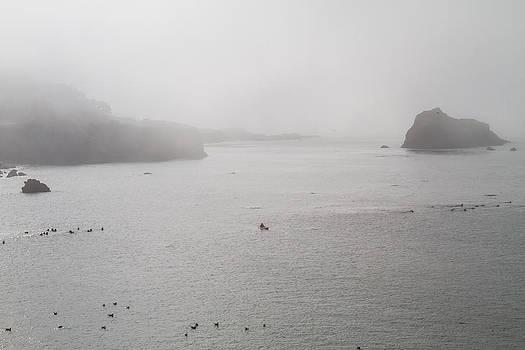 Mendocino CA Coast Fog by Brian Williamson