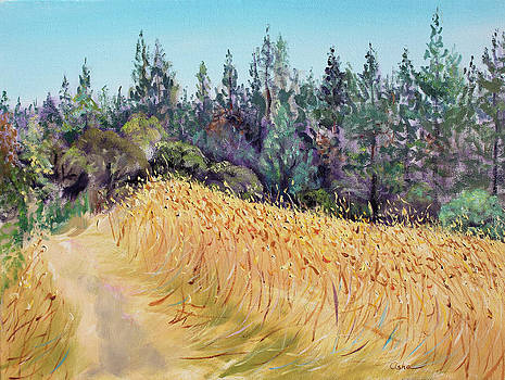 Mendocino High Grass Meadow at Susan's Place in July by Asha Carolyn Young