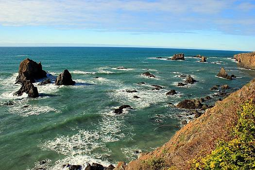 Mendocino Rocks by Leigh Meredith