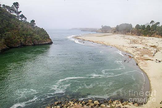 Mendocinos Big river by Brian Williamson