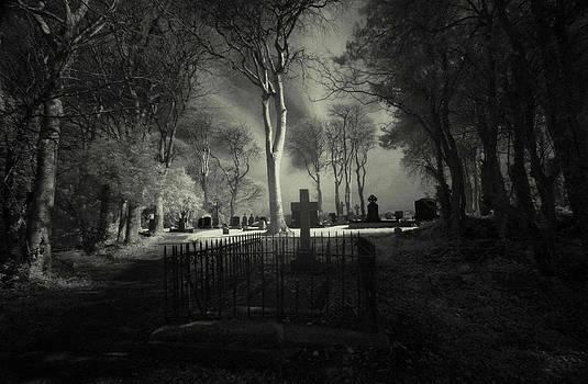 Menlo Cemetery by Peter Skelton