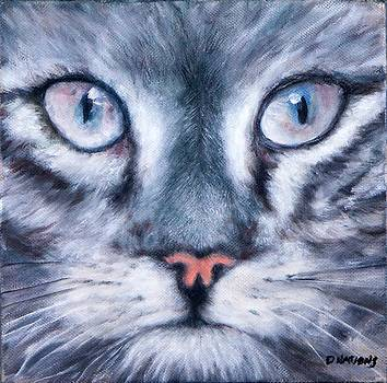 Meow by Diane Nations
