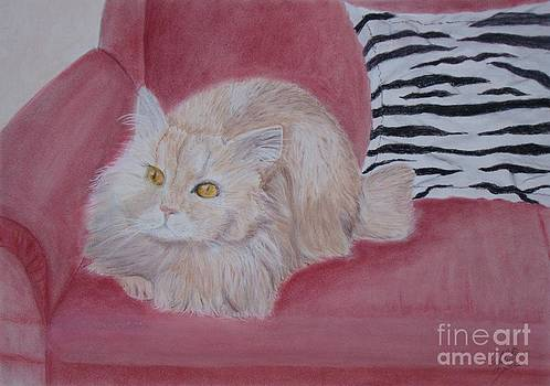Meowing on the sofa by Cybele Chaves