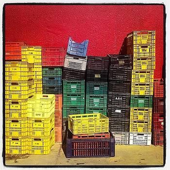 Mercado by Lauren Dsf