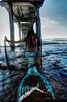 Mermaid on the Beach by Greg Amptman