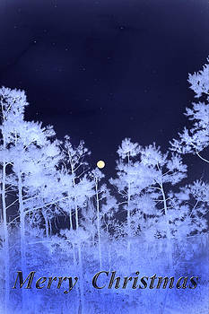 Nina Fosdick - Merry Christmas and Moon