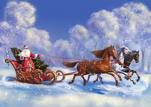 Merry Christmas and New Year greetings by Eldar Zakirov