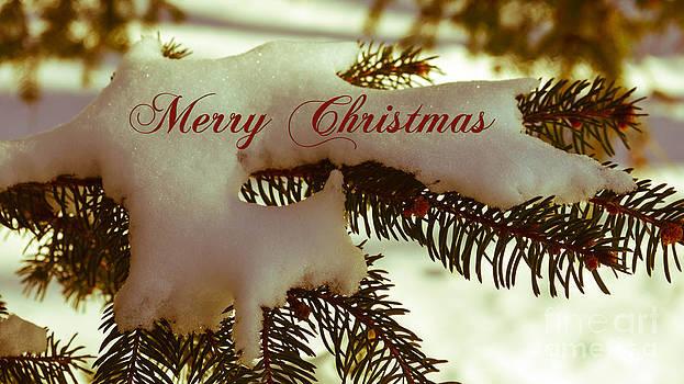Andrea Anderegg - Merry Christmas